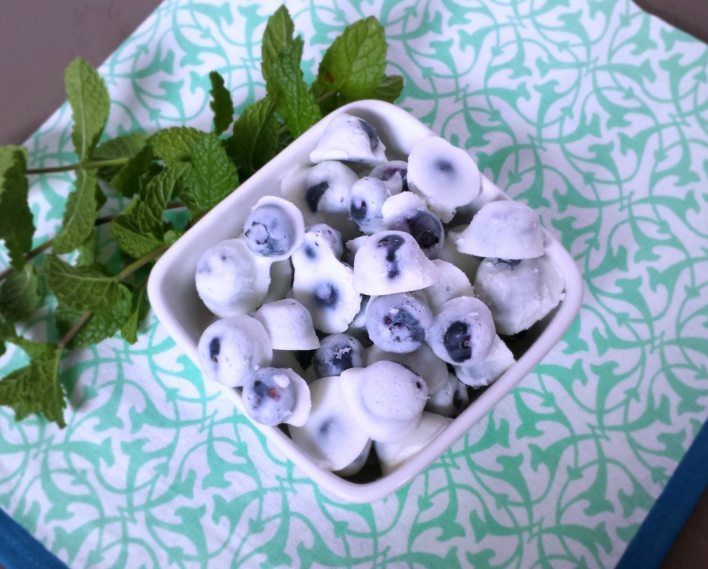 Frozen Yogurt Blueberries 22 1024x823 Frozen Blueberry Yogurt Bites