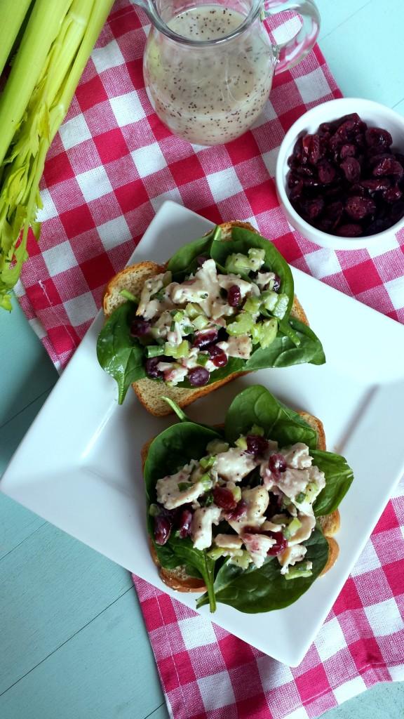 Cranberry Chicken Salad 2 576x1024 Cranberry Chicken Salad