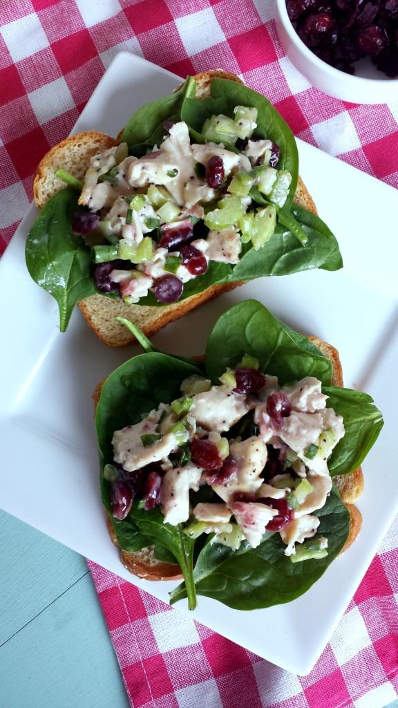 Cranberry Chicken Salad 4 576x1024 Cranberry Chicken Salad