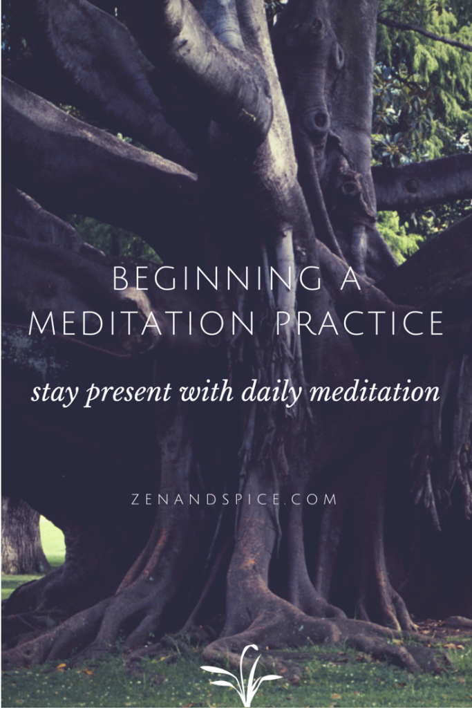 Beginning a Meditation Practice |zenandspice.com