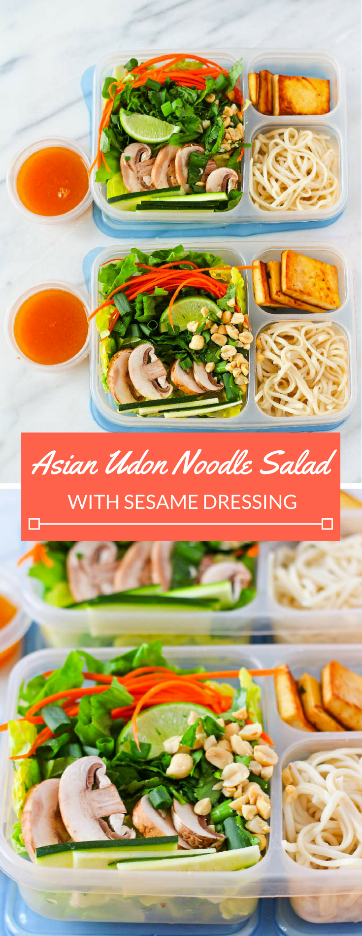 Asian Udon Noodle Salad with Pan Seared Tofu & Toasted Sesame Dressing